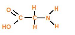 Forma química colágeno