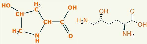 Forma química