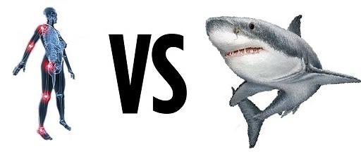 Beneficios Cartílago Tiburón y de Colágeno Hidrolizado