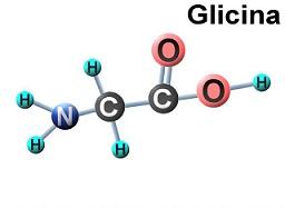 Glicina vs Colágeno