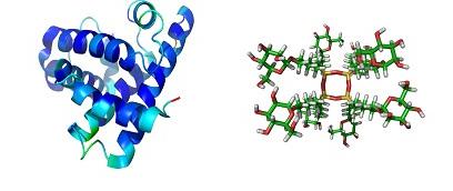 Composición Ácido Hialurónico vs Colágeno