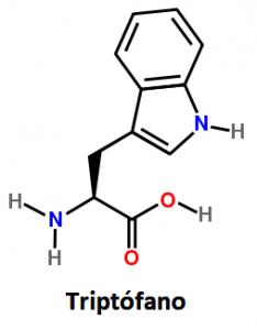 Triptófano vs Colágeno